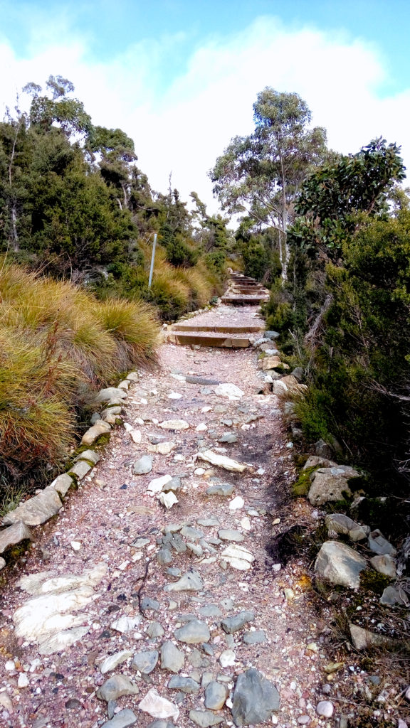 Steps along Dove Lake Circuit Track