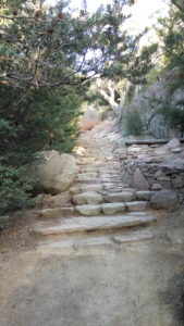 Steps along the track