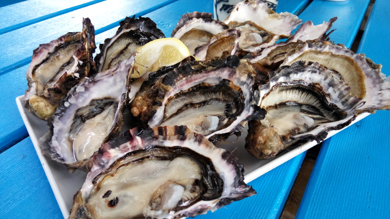 Oysters by the dozens...