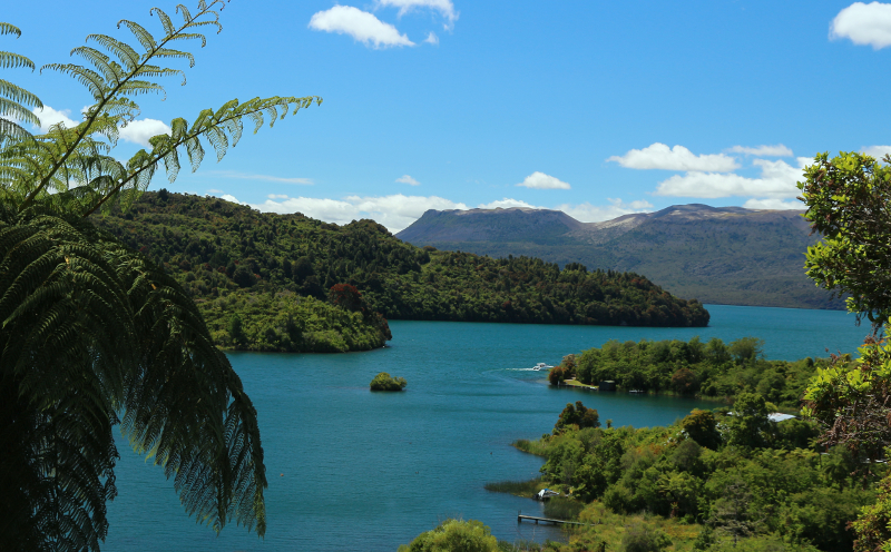 Relax with the endearing view of Lake Tarawera