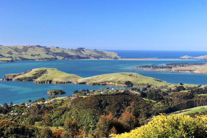 The Otago Peninsula